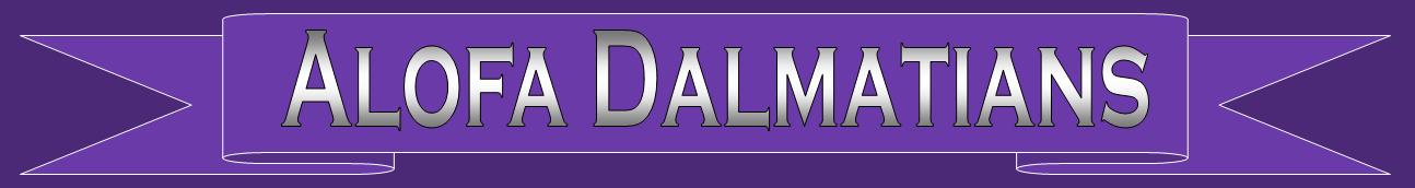 Alofa Dalmatians