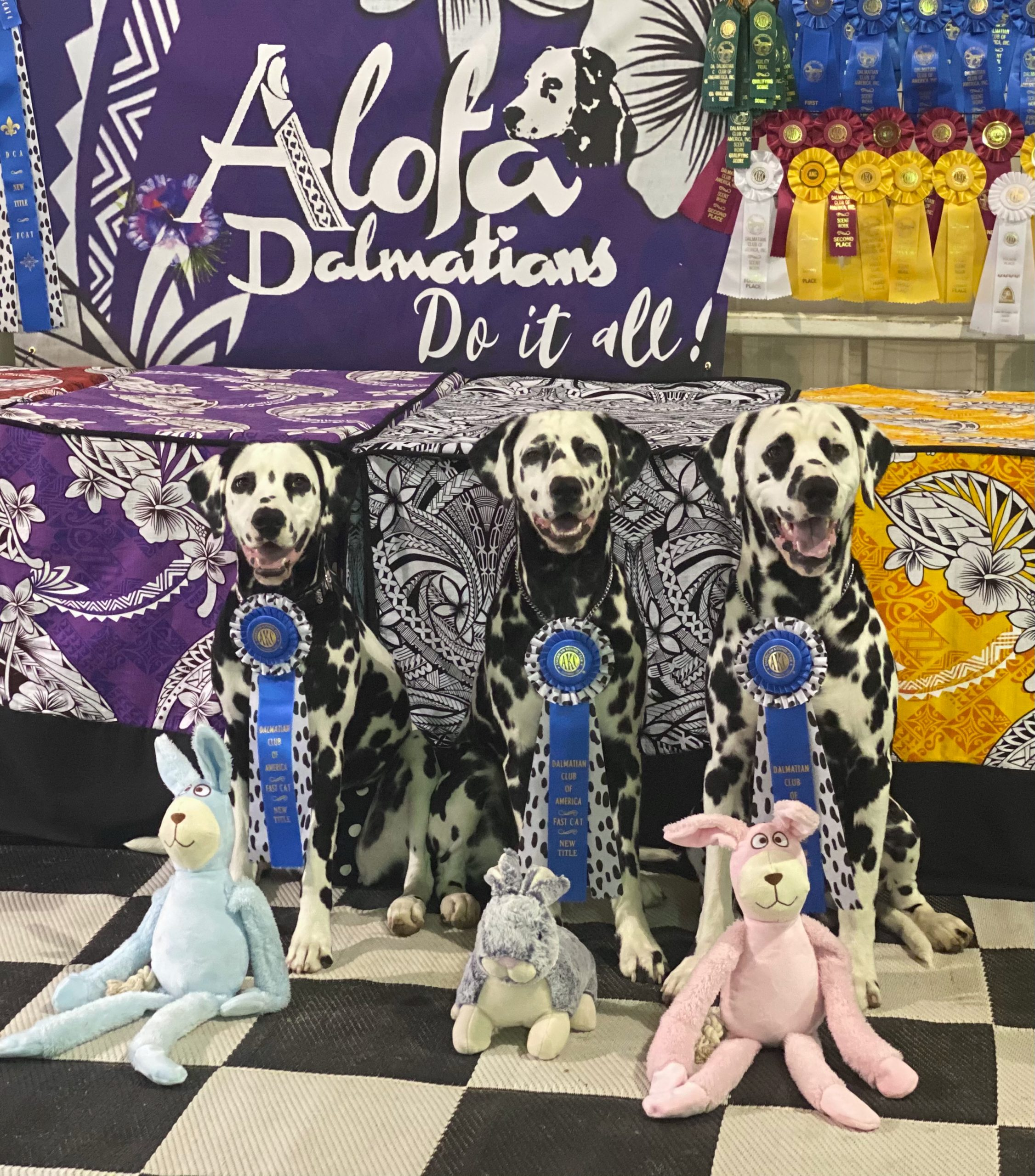 Puppies with their BCAT ribbons